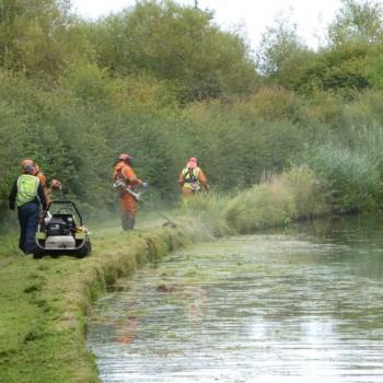 Canal grass cutting